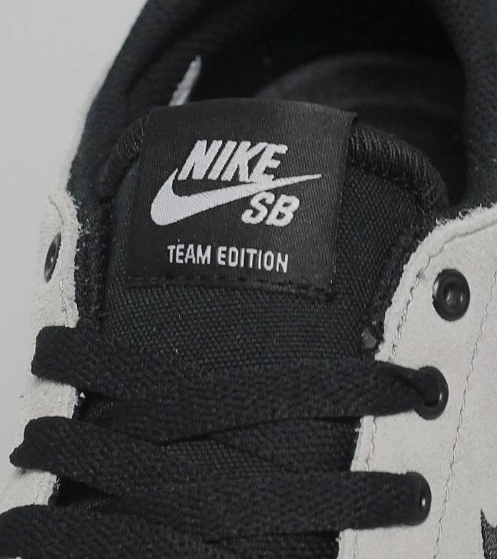 Nike SB Team Edition