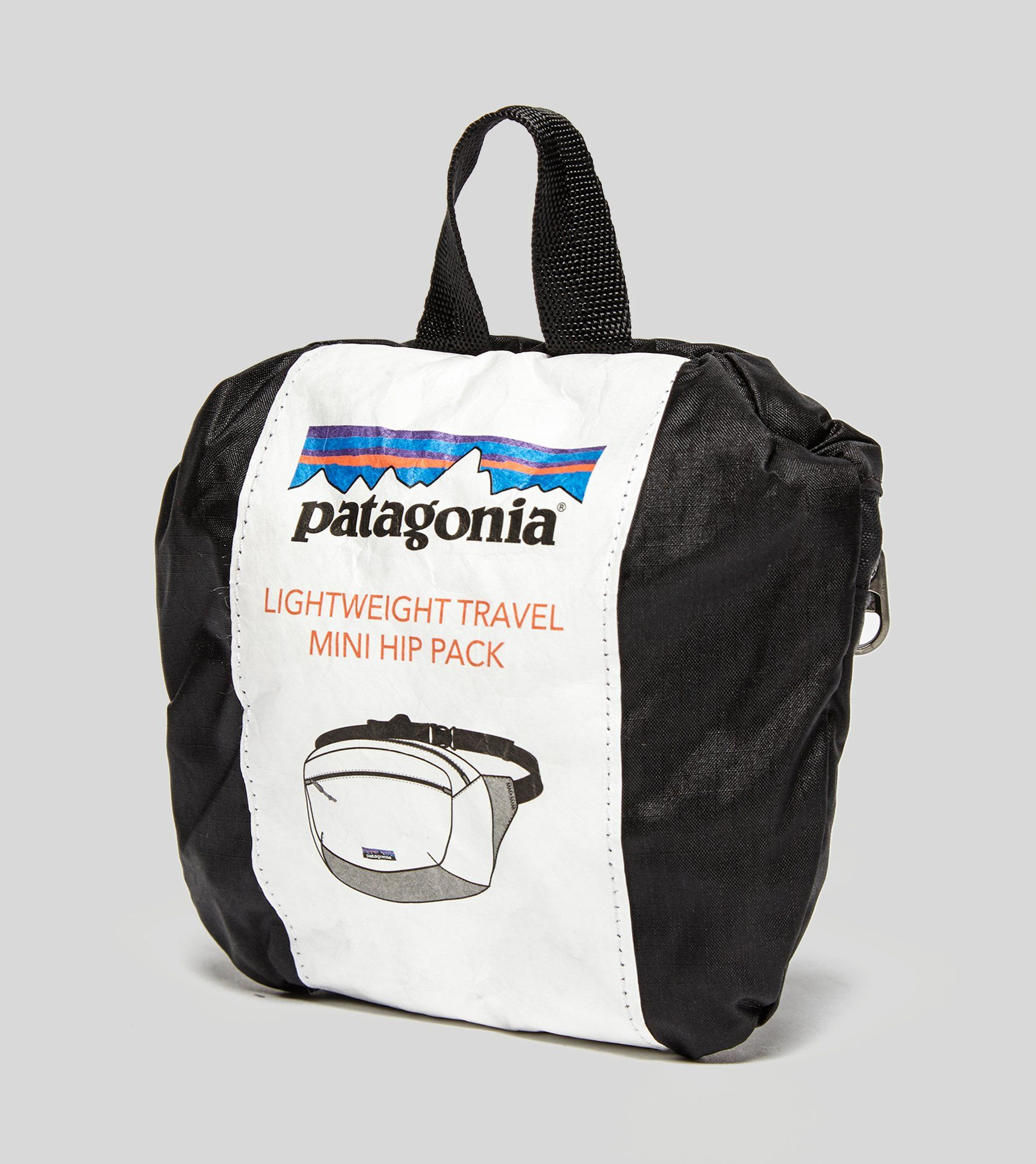 Patagonia P-6 Mini Hip Pack