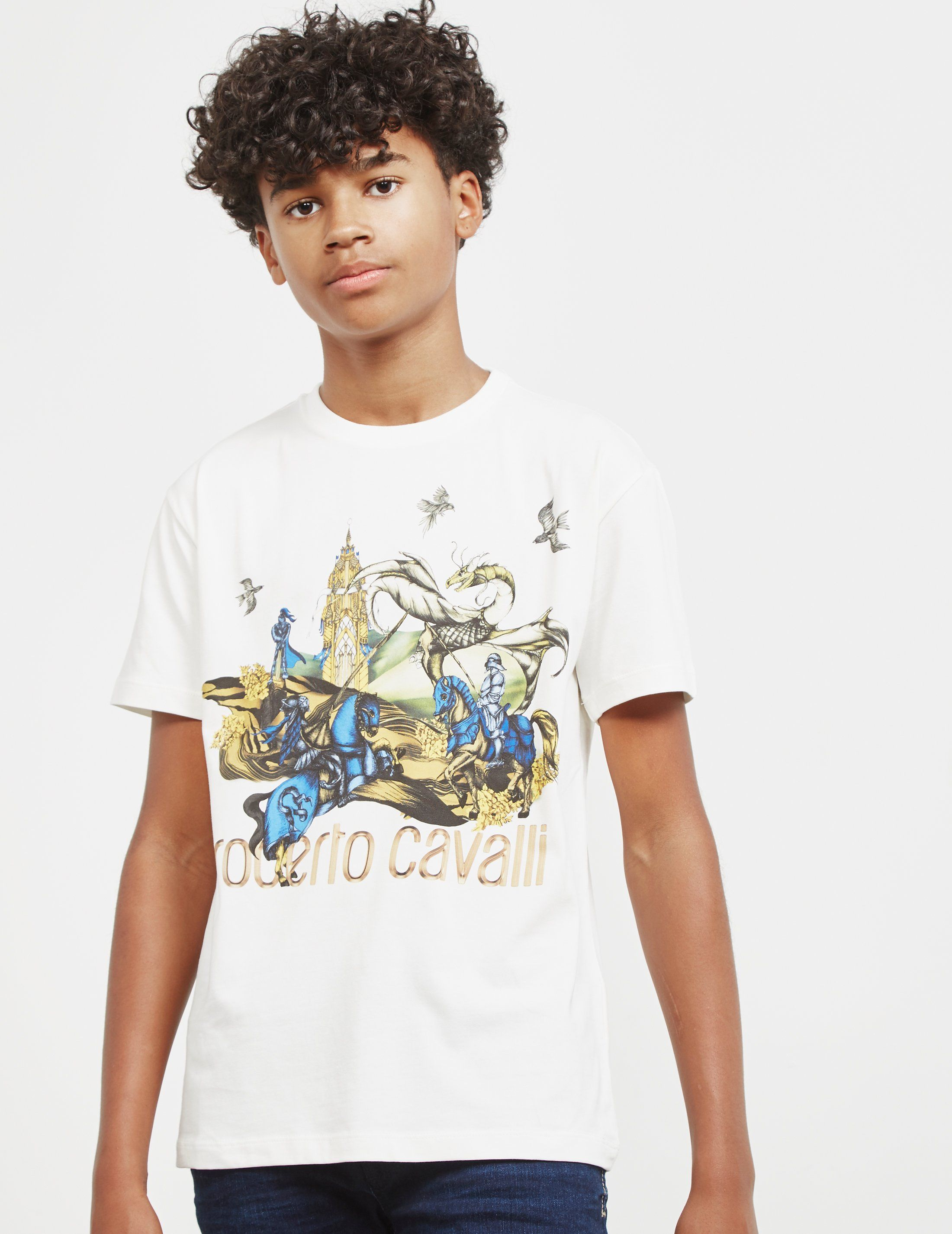 Roberto Cavalli Knights Print Short Sleeve T-Shirt