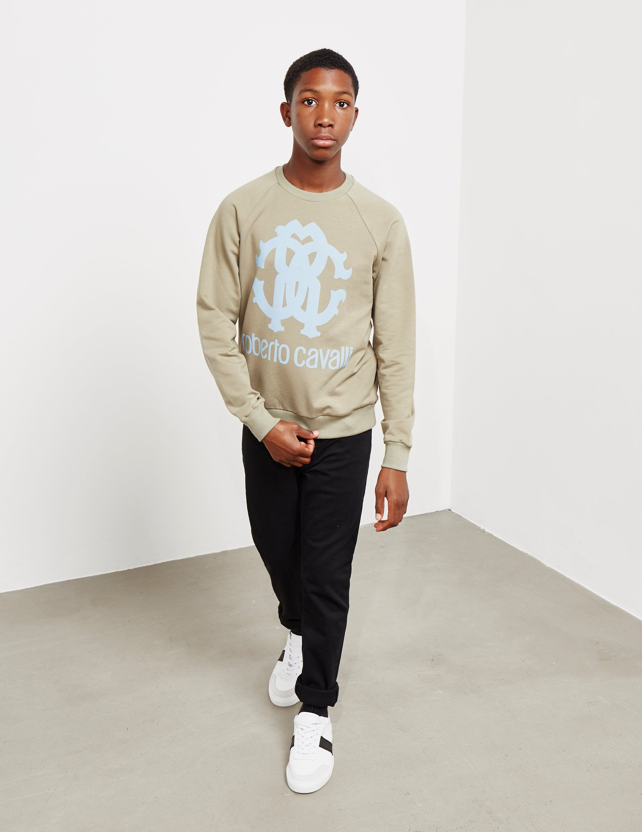 Roberto Cavalli Emblem Sweatshirt
