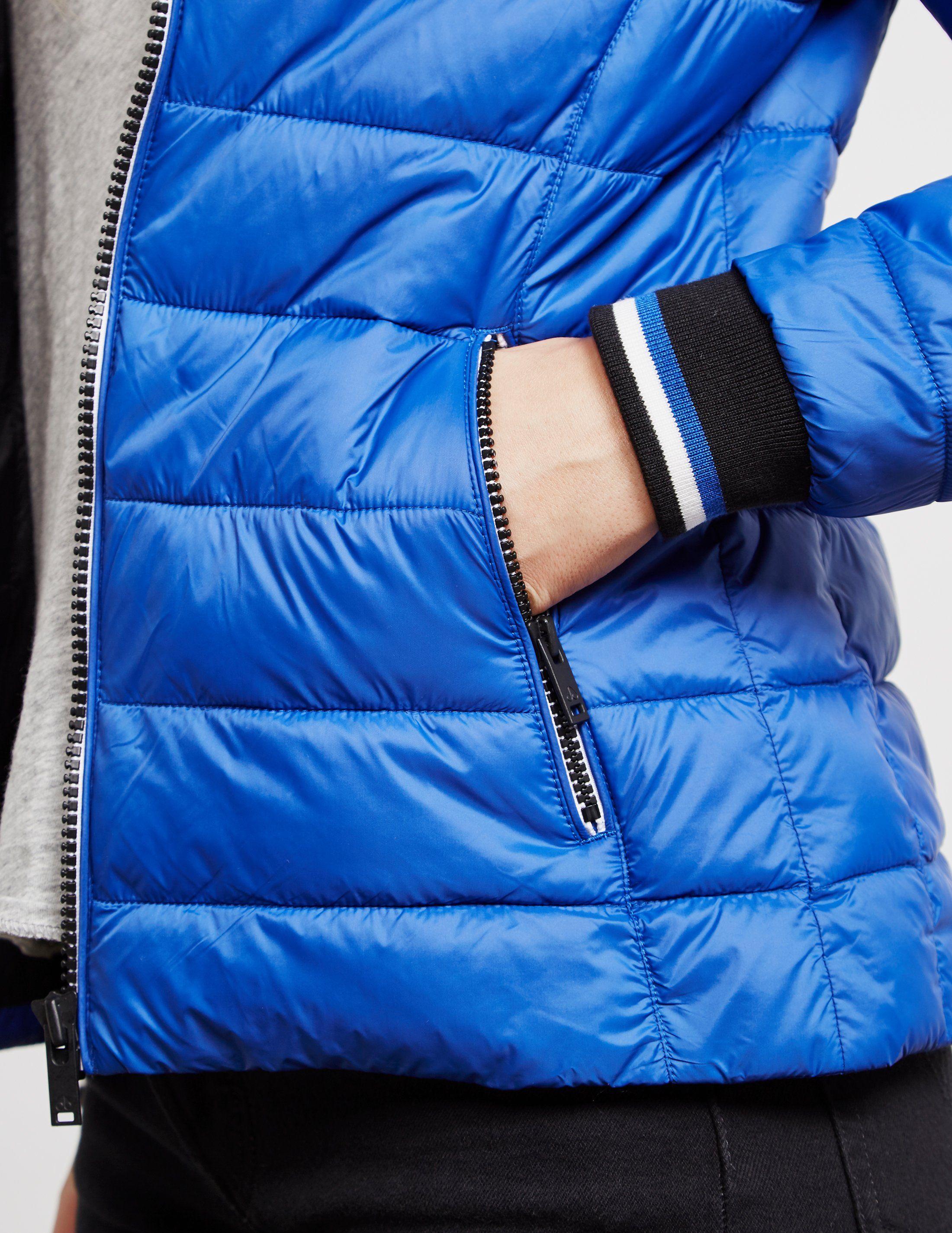 Moose Knuckles Sauve Padded Jacket