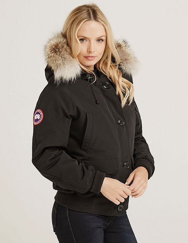 canada goose brown chilliwack