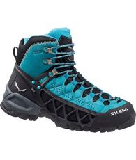 Women's Alp Flow Gore-Tex Boot