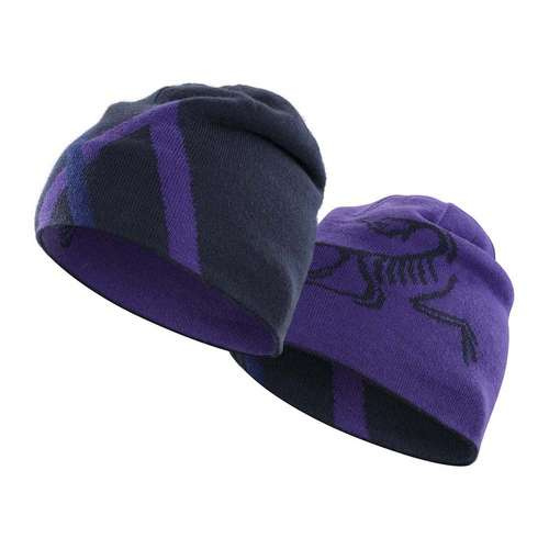 Men's Arc Mountain Toque Hat