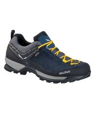 Men's Mountain Trainer GTX