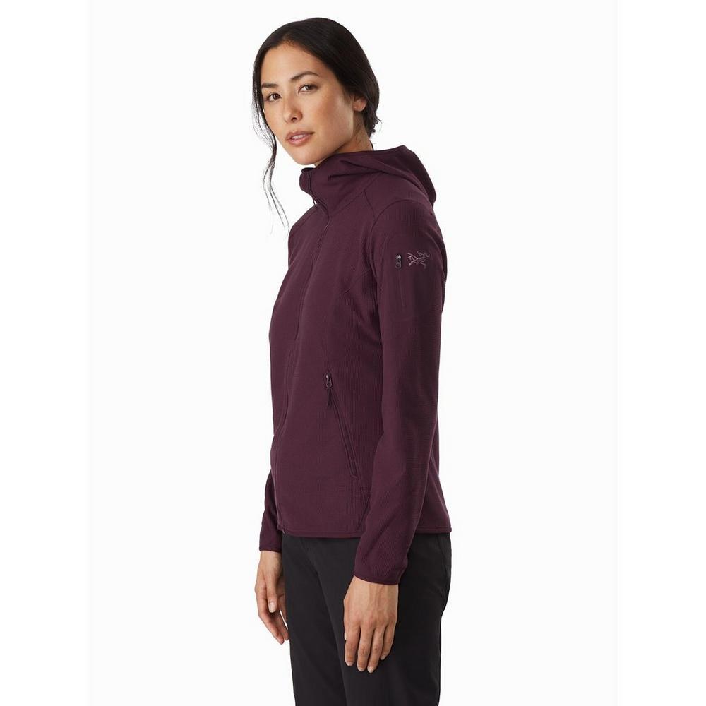 Arcteryx Women's Delta LT Hoody - Purple