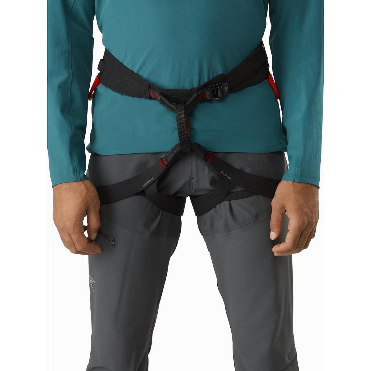 Arcteryx Men's C-Quence Harness