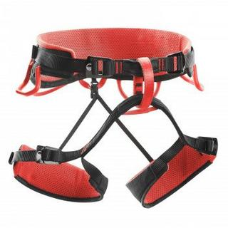 Syncro Climbing Harness - Black/Red