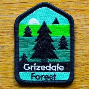 Patch - Grizedale Forest