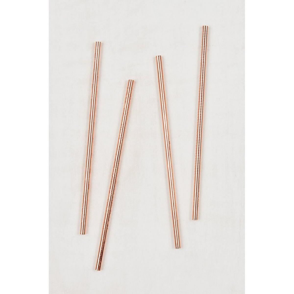United By Blue Adventure Copper Straw Set of 4