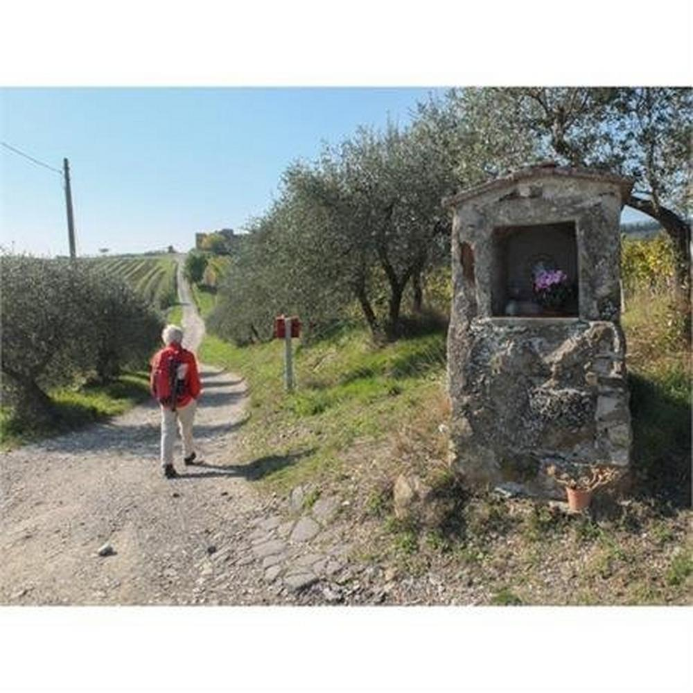 Cicerone Guide Book: Walking in Tuscany : Gillian Price
