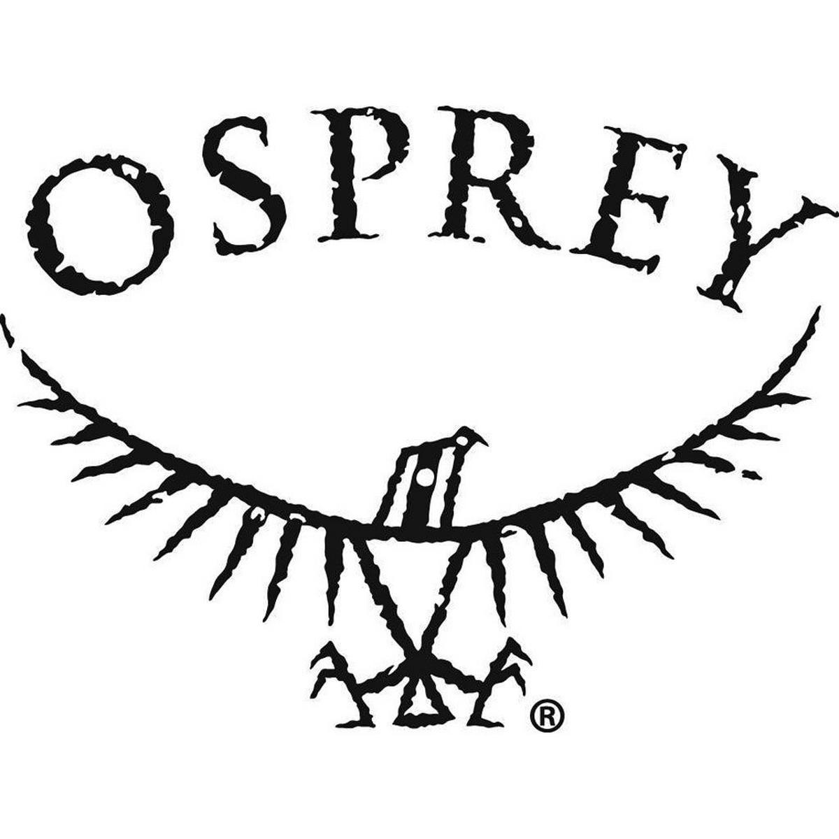 Osprey Hi-Vis Raincover Small - Green