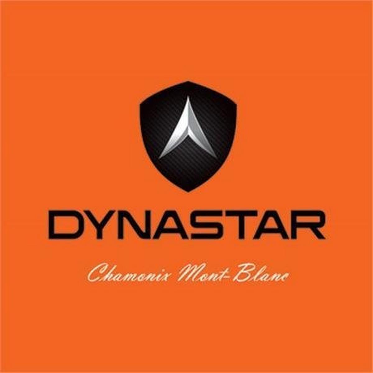 Dynastar Ski Luggage Basic Ski Bag 185cm Black/Blue