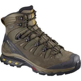 Boots Men's Quest 4D 3 GTX Wren/Bungee Cord/Green