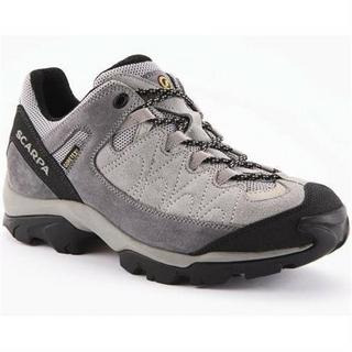 Shoes Women's Vortex GTX Silver/Smoke