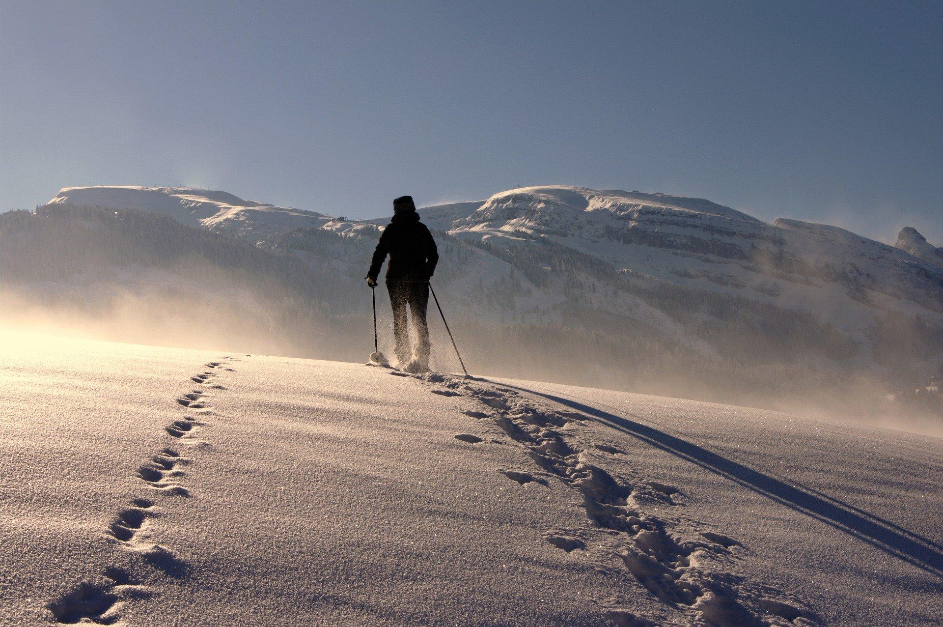 Walking Poles Snow