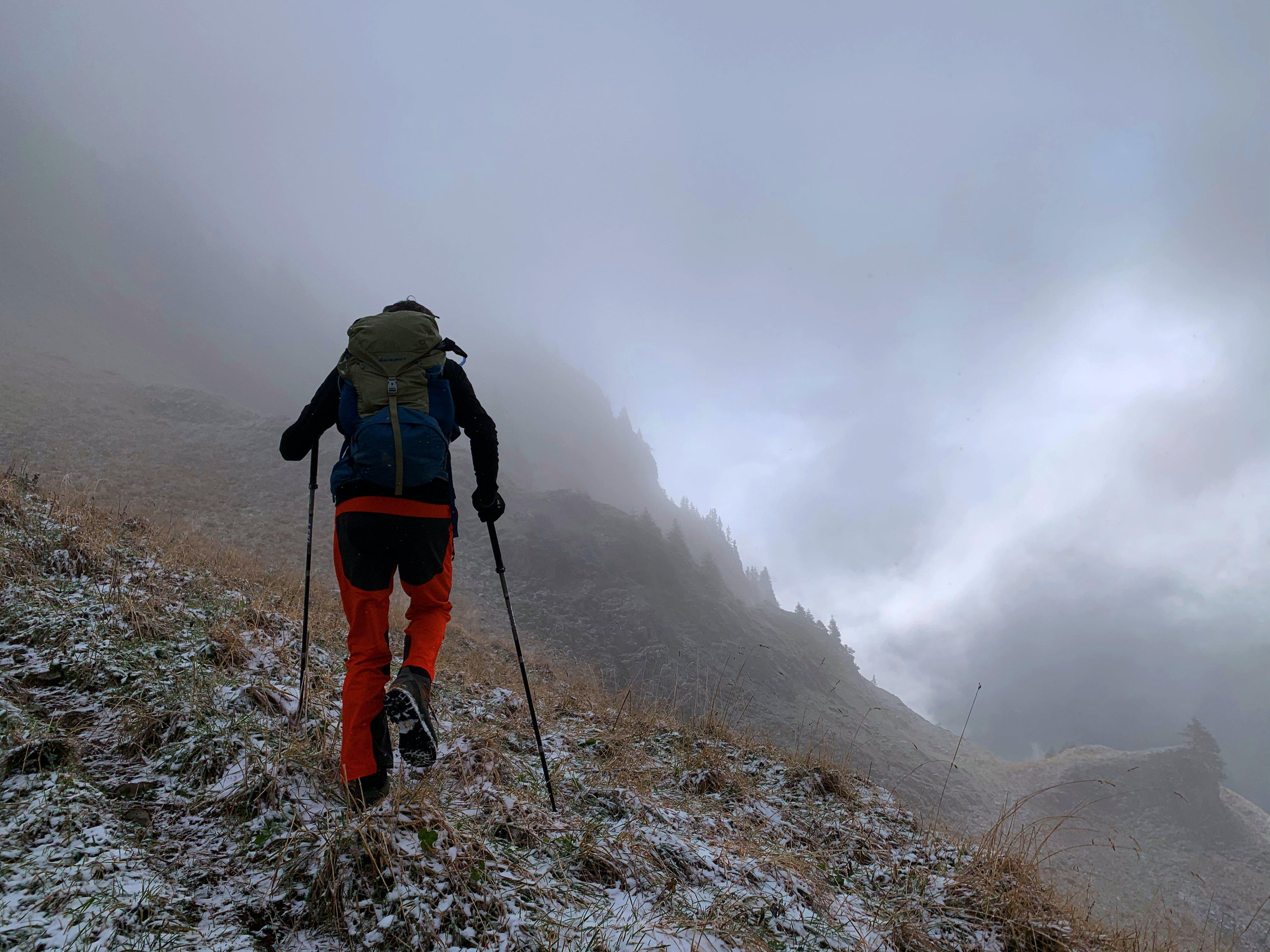 Walking Poles In The Mist