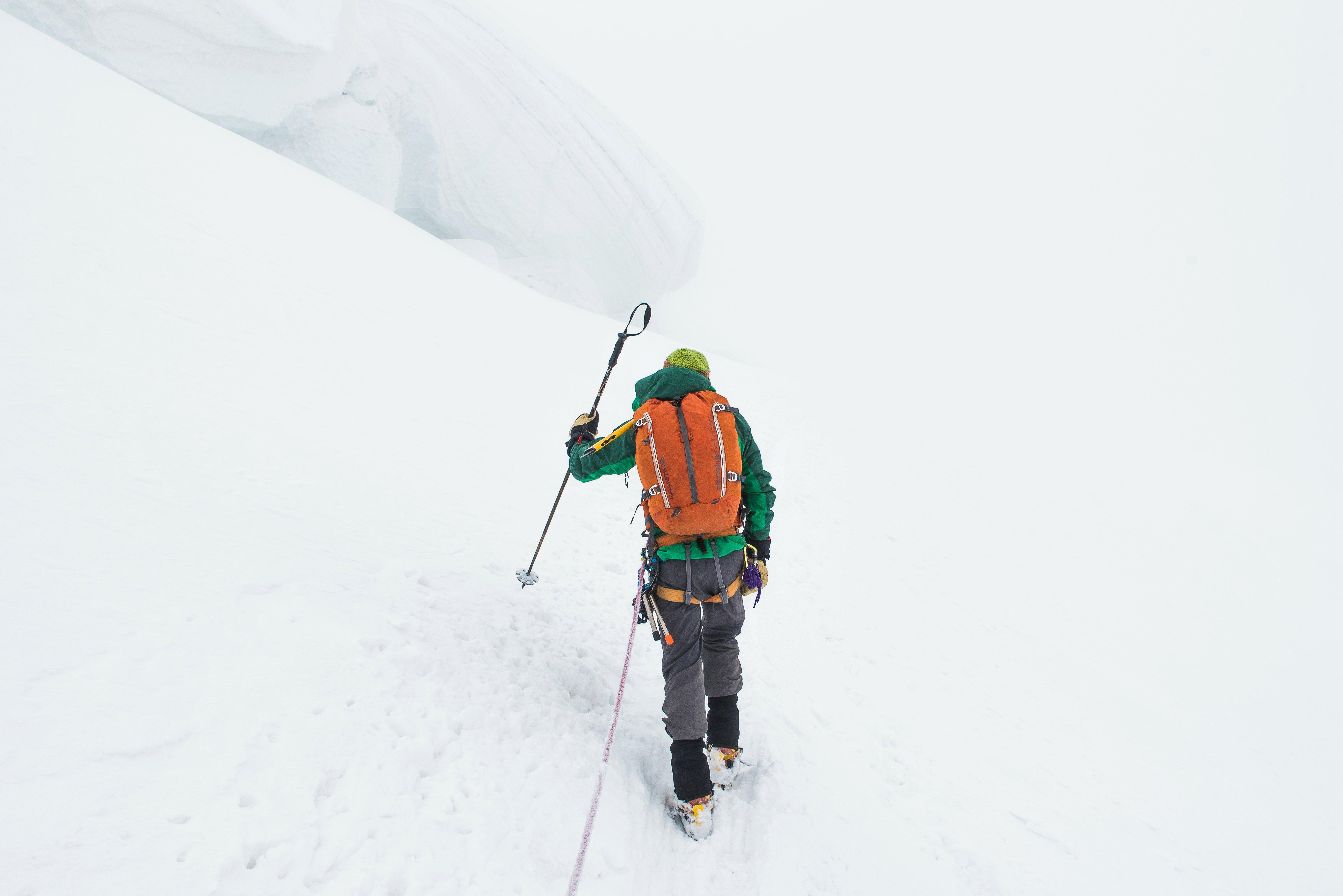 Walking Poles In The Snow