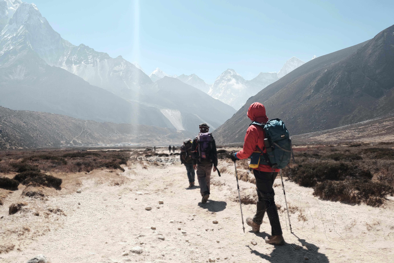 Walking Poles On Hiking Trail