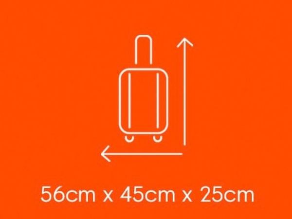 Easyjet cabin size bags