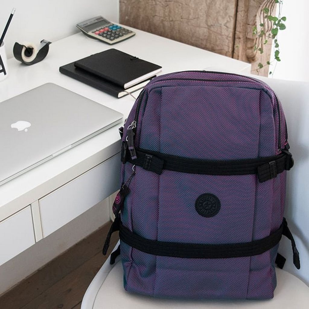 Cosa posso inserire all'interno di una borsa per PC?