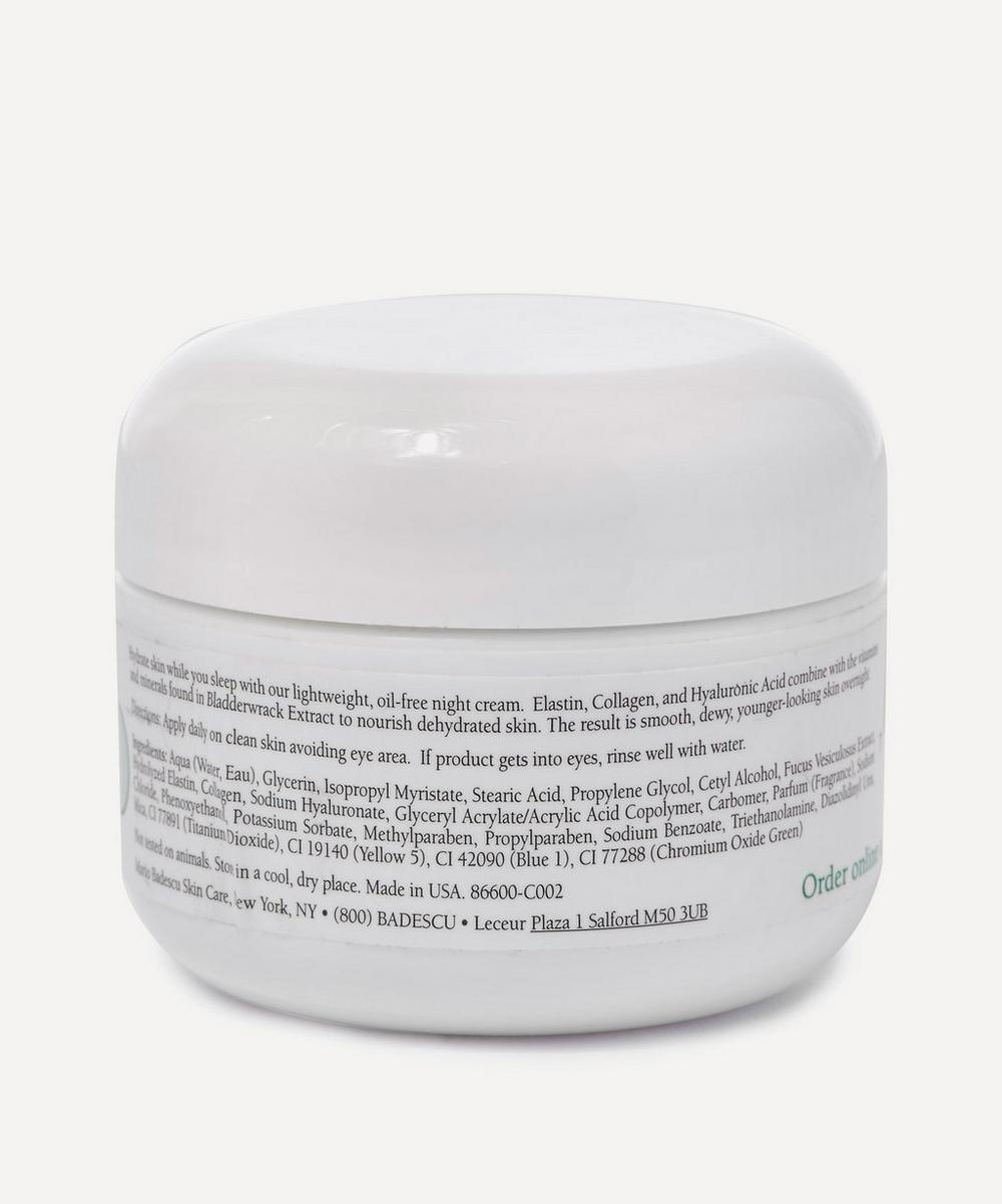 Seaweed Night Cream 28g