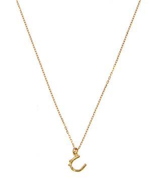 18ct Gold Teeny Tiny Horseshoe Necklace