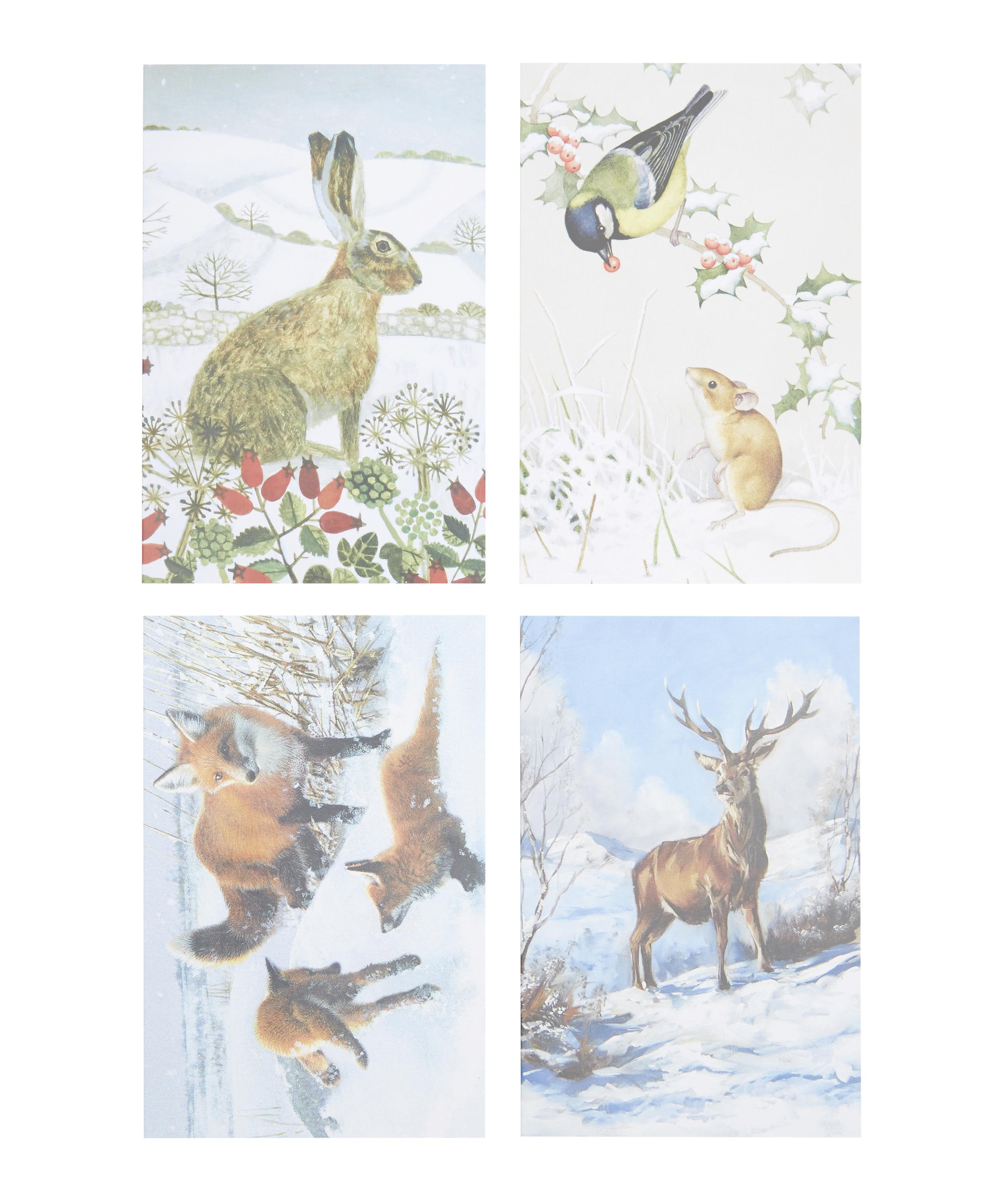 Animals in the Snow Charity Christmas Cards | Liberty London