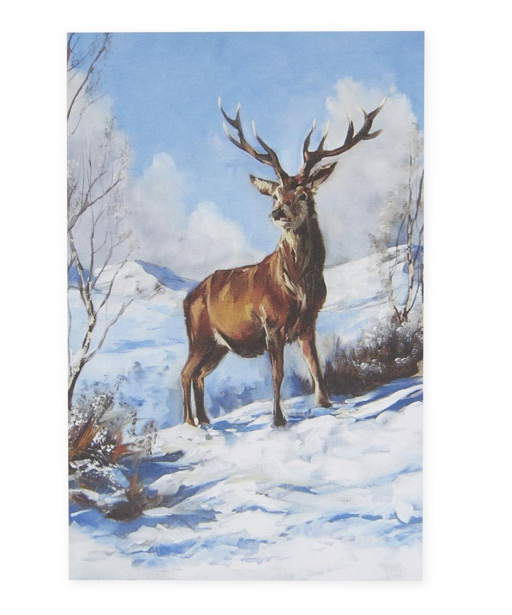 animals in the snow charity christmas cards - Animal Charity Christmas Cards