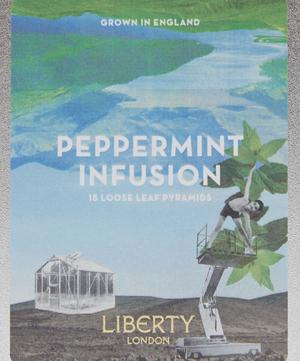 Peppermint Infusion 30g