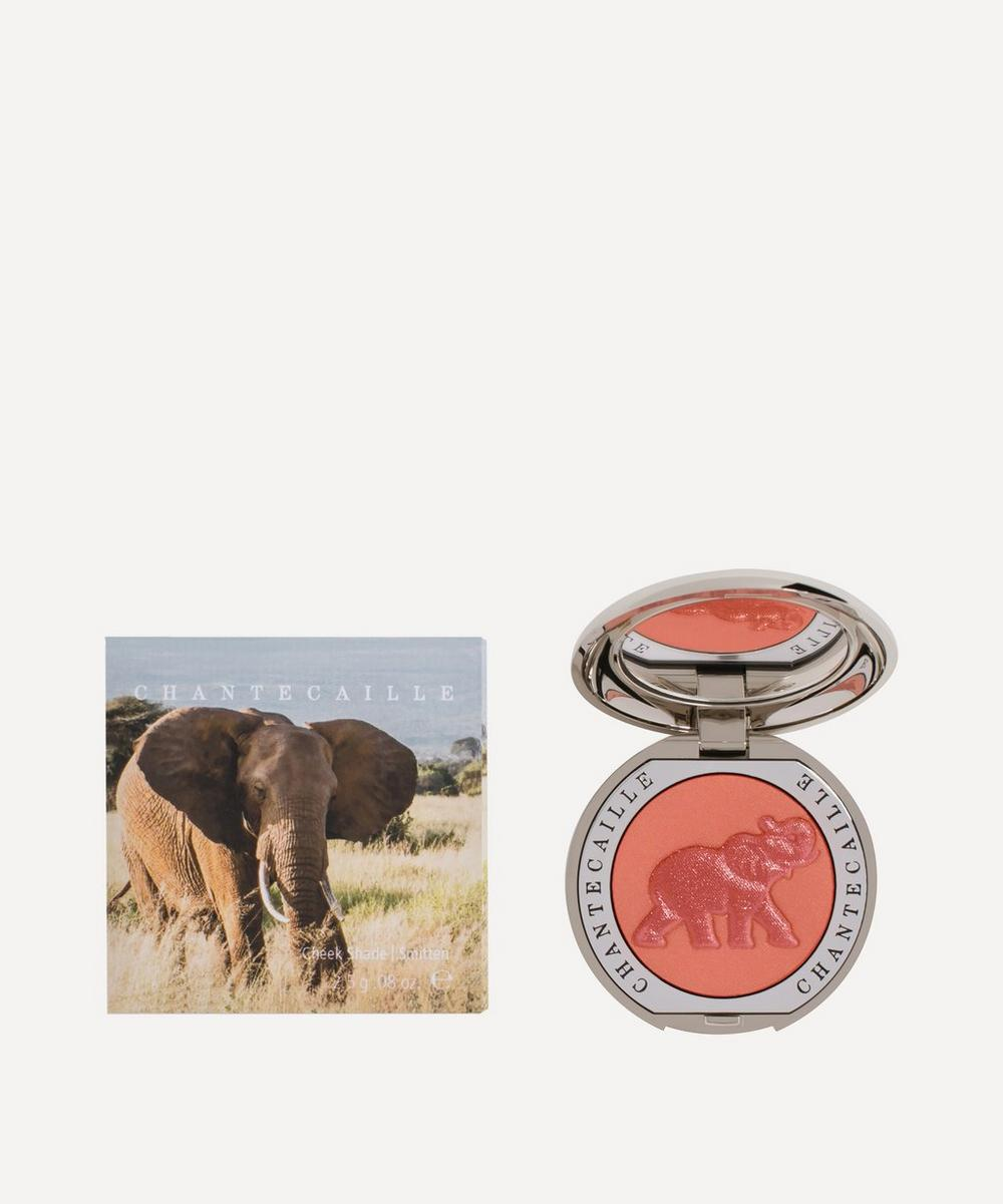 Philanthropy Cheek Colour in Elephant (Smitten)