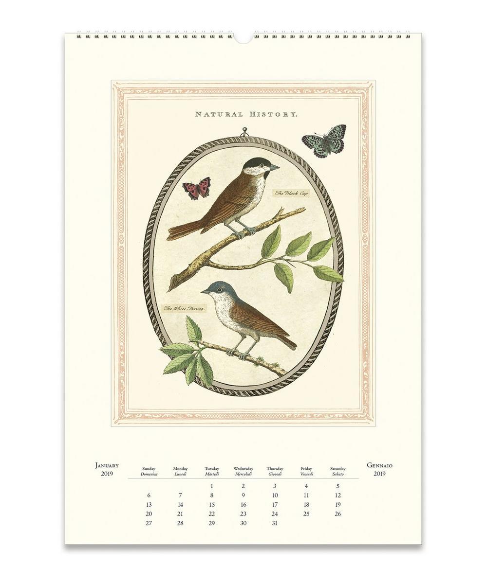 Flora and Fauna Calendar 2019