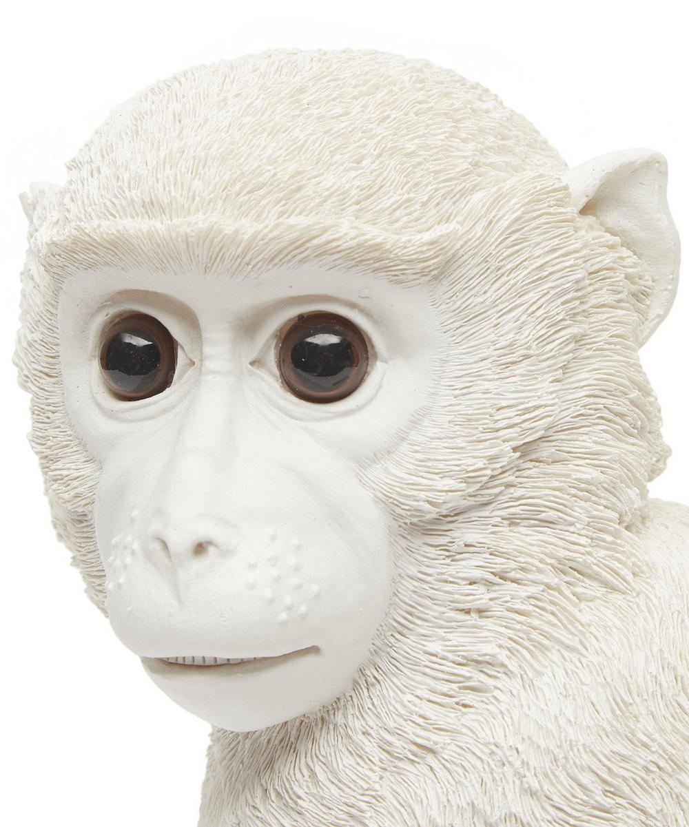 Monkey Coin Bank