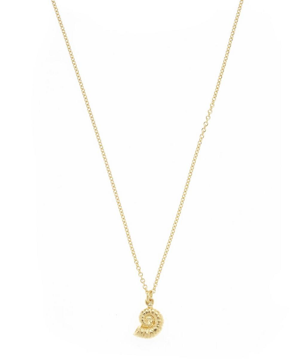 Gold-Plated Ammonite Shell Pendant Necklace