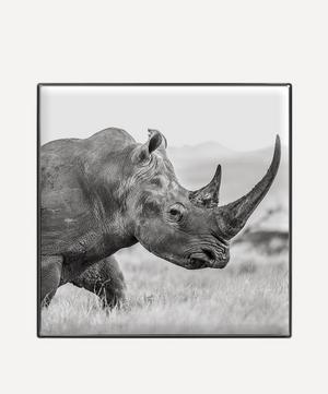 Rhinoceros Luminescent Eye Shade