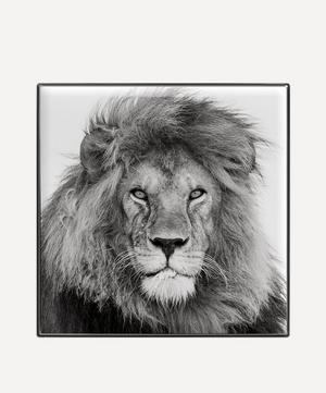 Lion Luminescent Eye Shade
