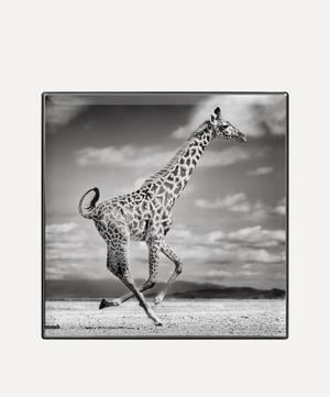 Giraffe Luminescent Eye Shade