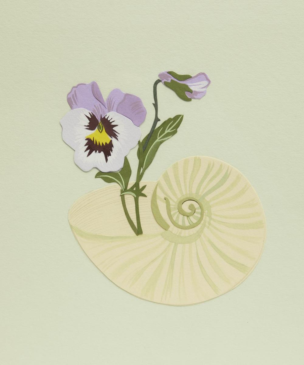 Pansy and Shell Framed Artwork