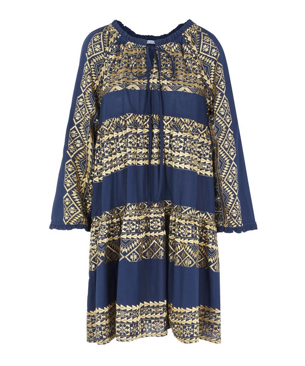 Embroidered Flare Mini Dress