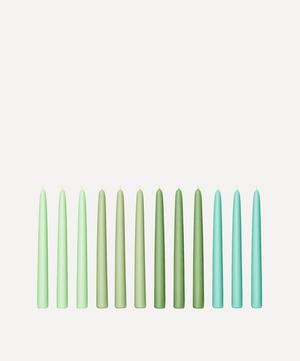 Seaweed Taper Candles Set of 12
