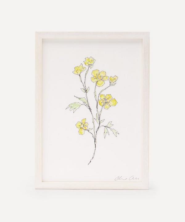Claire Coles - Traces of Flora: Buttercup Framed Embroidery