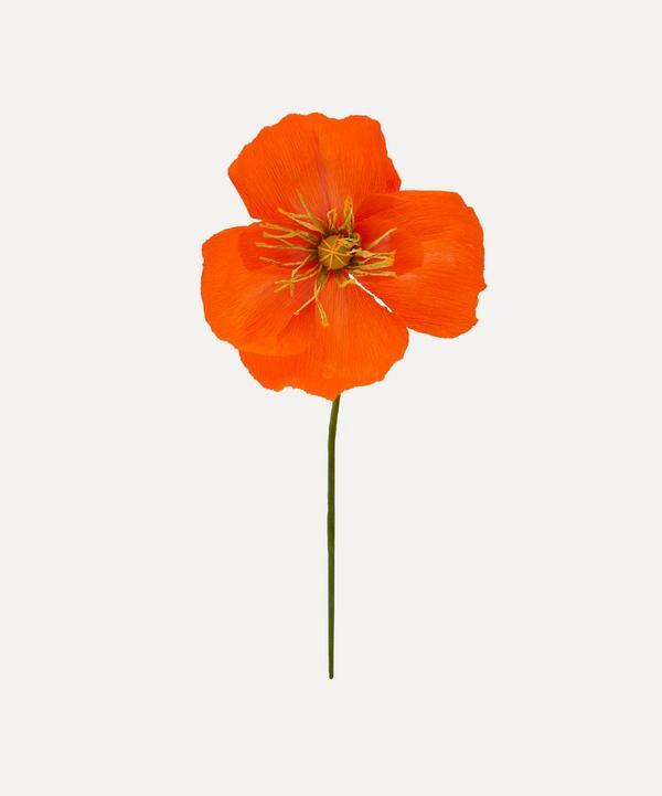 Leo Flowers - Giant Icelandic Poppy