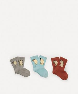 Polar Bear Socks Pack of Three Size 20-28