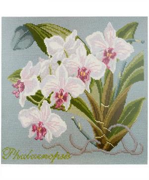 Phaleanopsis Orchid Tapestry Kit