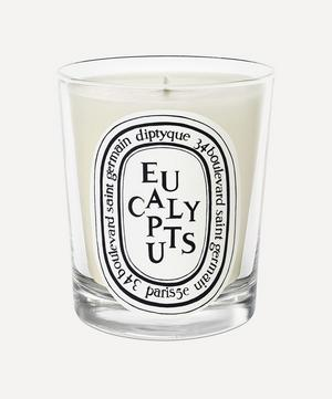 Eucalyptus Scented Candle 190g