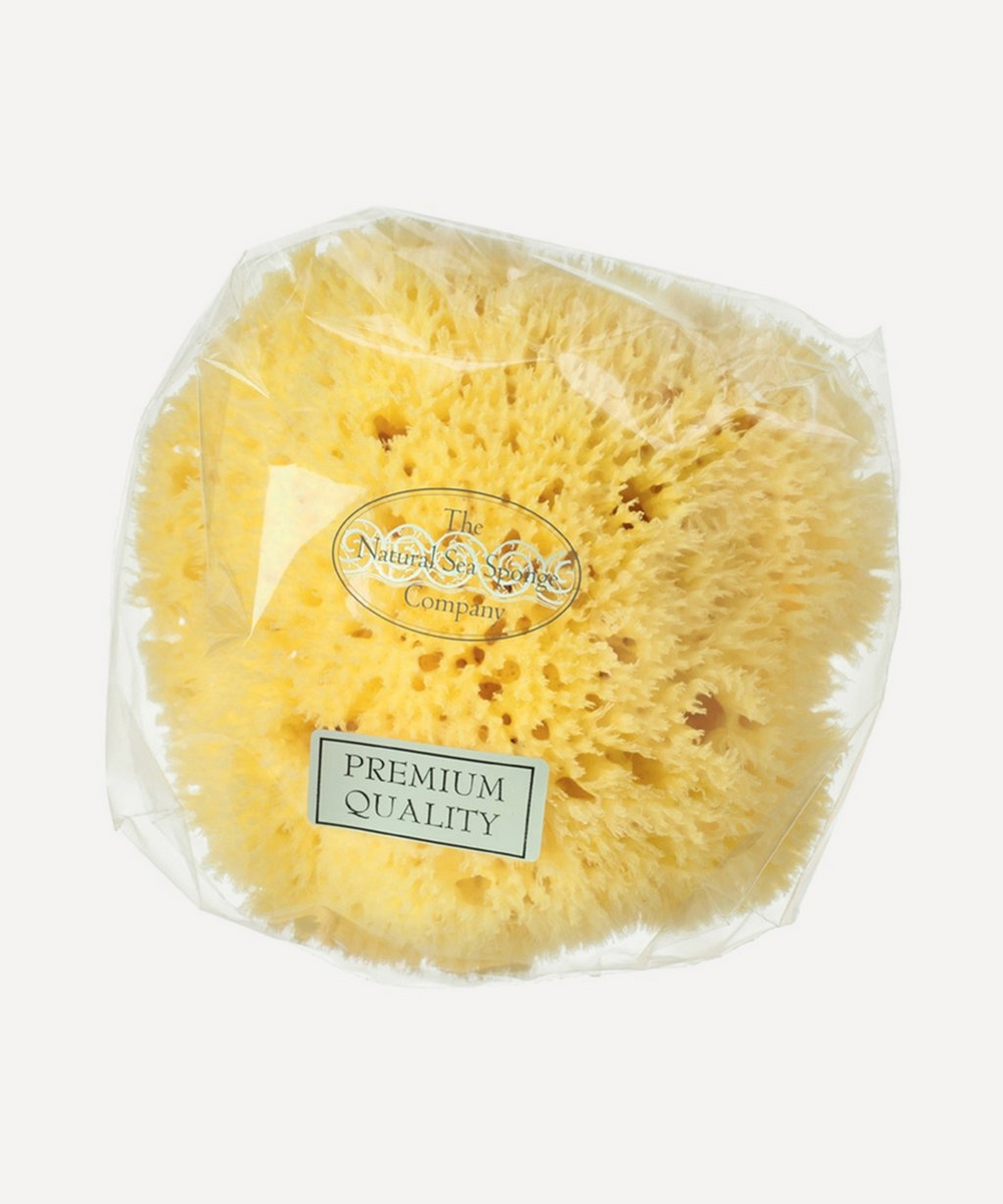 Small Honeycomb Natural Sea Sponge