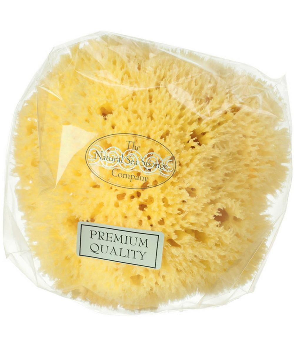 Medium Honeycomb Natural Sea Sponge