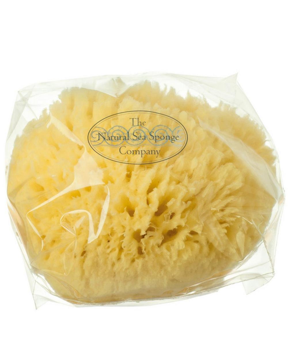 Small Natural Sea Wool Sponge