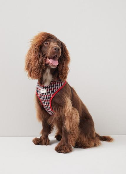 Darcy Houndstooth Check Wool-Blend Dog Harness