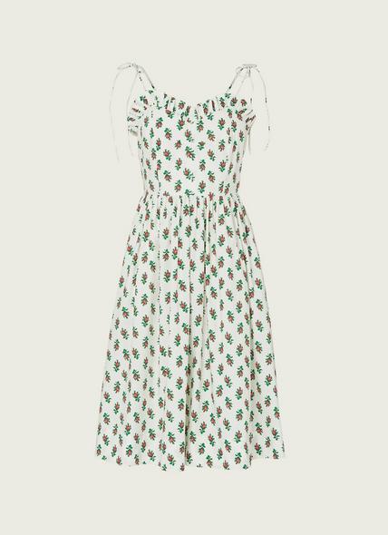 Frenchi English Rose Print Cotton Dress
